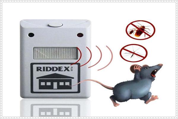 Sử dụng máy đuổi chuột