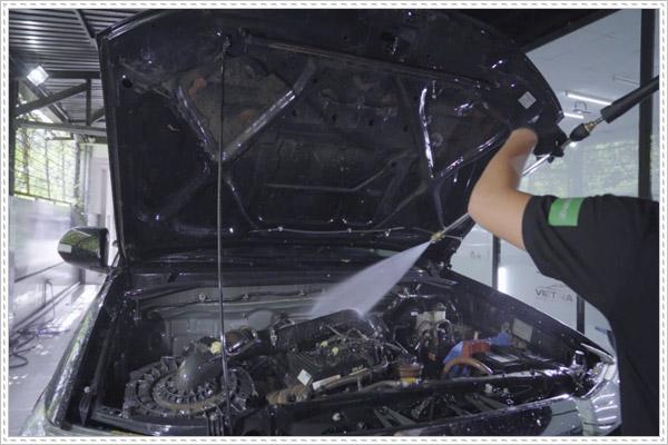 Cách chống chuột vào xe ô tô hiệu quả và nhanh chóng