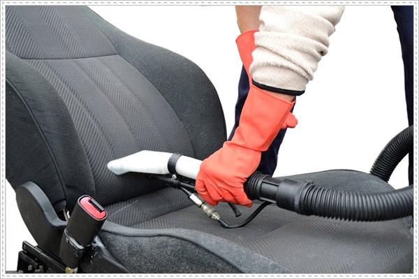 Thường xuyên vệ sinh nội thất ô tô để chống chuột